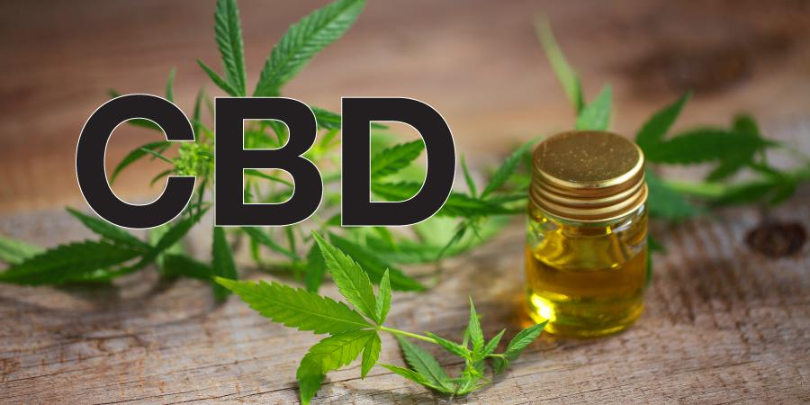 CBD Network – A review of a medical marijuana company